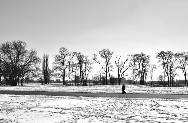 Tempelhofer Park, Winter,