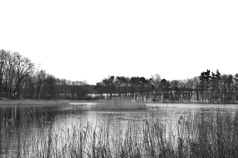 Reichenow, Brandenburg, Winter, Langer See