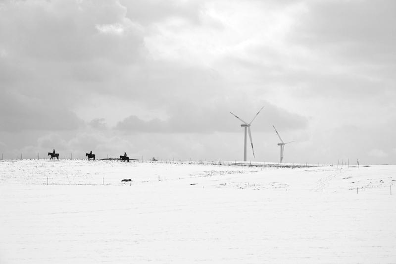 Reichenow, Brandenburg, Winter, Reiter