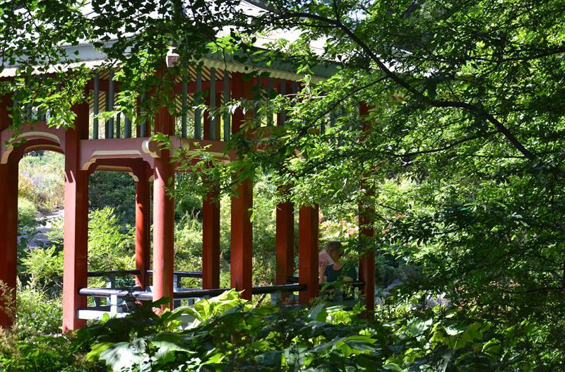Japanische Laube, Botanischer Garten Berlin