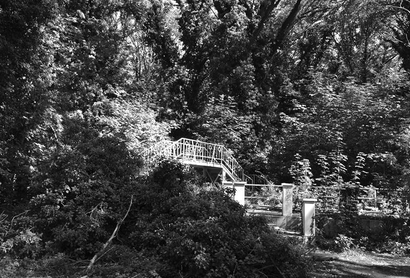 Spreepark Plänterwald im Herbst, Brücke, Fabian Fröhlich