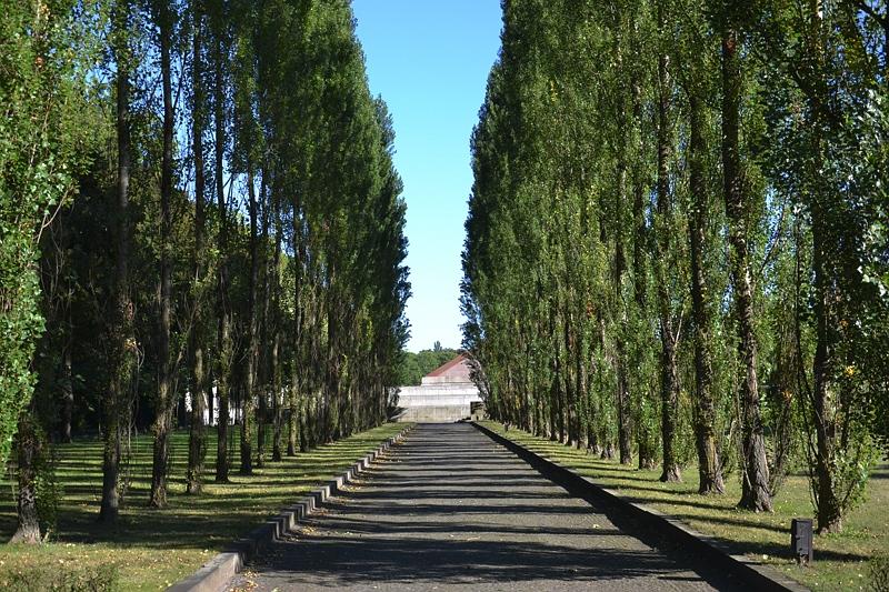 Sowjetisches Ehrenmal, Treptower Park, Allee
