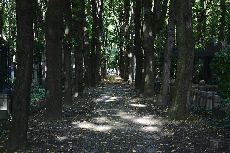 Jüdischer Friedhof Berlin Weißensee, Allee
