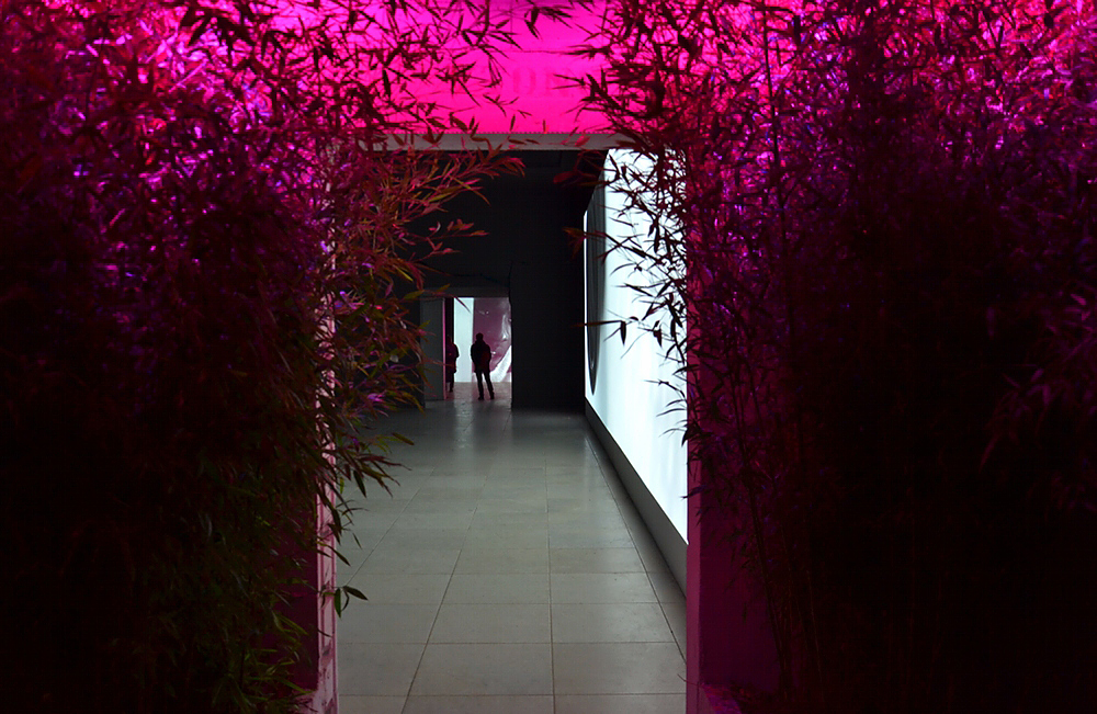Biennale Venice, 3013, Denish Pavilion, Jesper Just