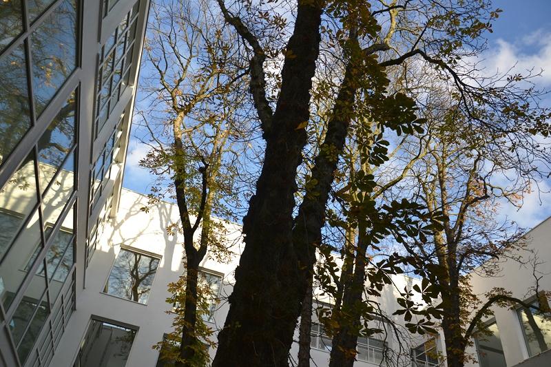 Museum Angewandte Kunst, Frankfurt, Innenhof, Richard Maier, Architektur