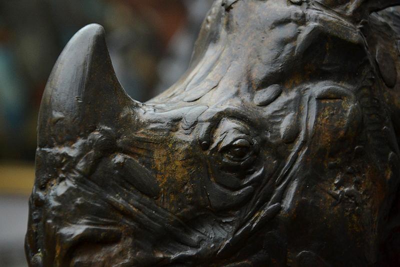 Rembrandt Bugatti, Alte Nationalgalerie, Nashorn, Rhinoceros