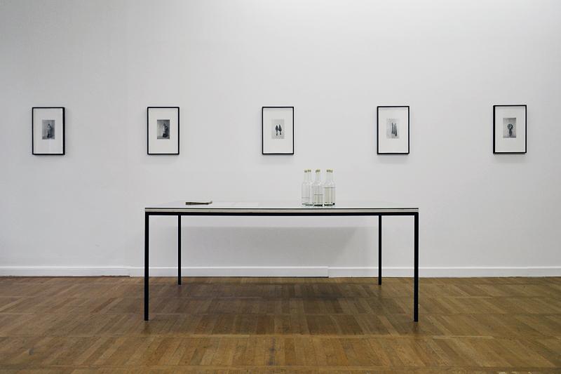 8. Berlin Biennale, Haus am Waldsee, Mathieu Kleyebe Abonnec, Sector IX B Prophylaxis of Sleeping Sickness