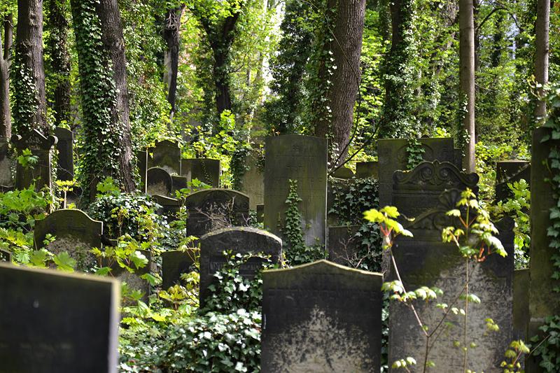 Jüdischer Friedhof Schönhauser Allee, Prenzlauer Berg, Berlin, Gräberfeld