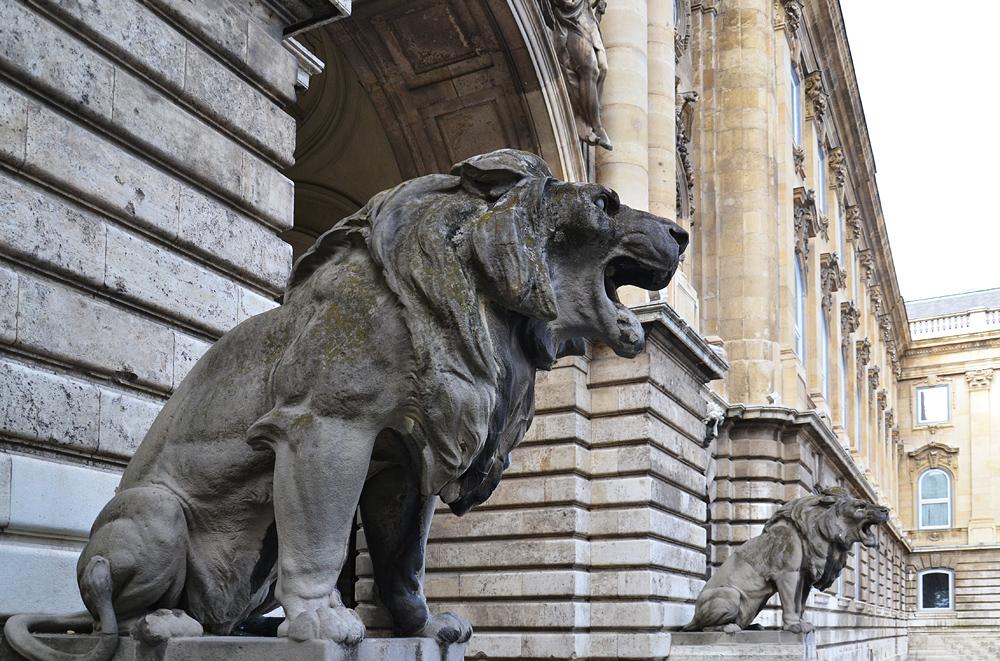 Budavári palot Budapest, Löwentor im Burgpalast