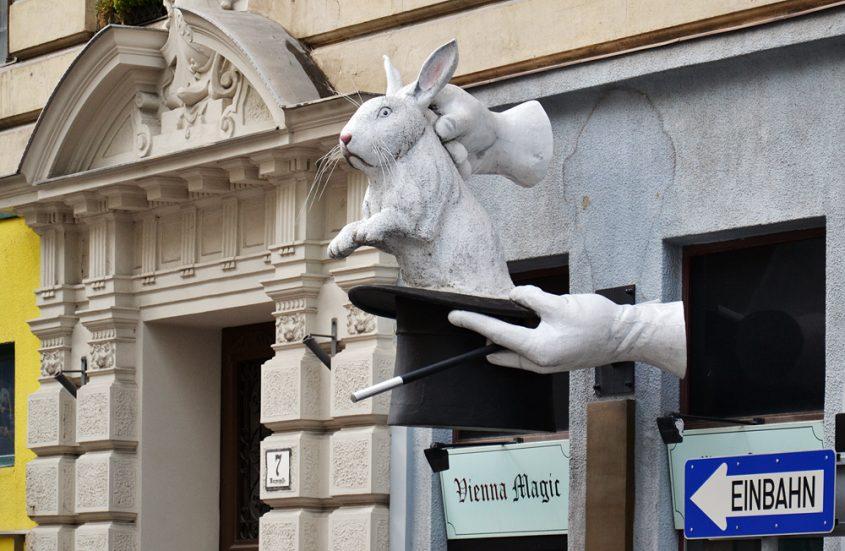Wien, Vienna Magic, Hase