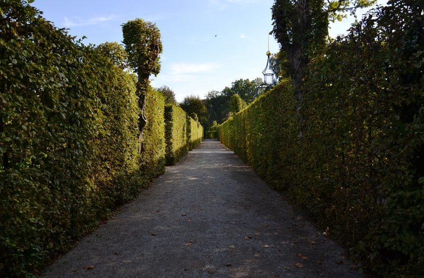 Kloster Neuzelle, Klostergarten