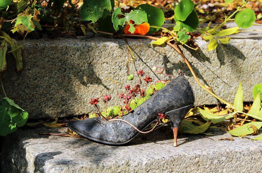 Reichenow Schuh