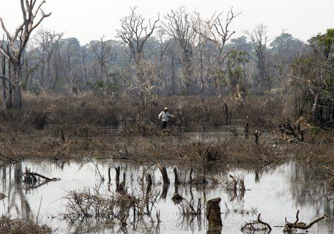Angkor, Fischer, Nördlicher Baray