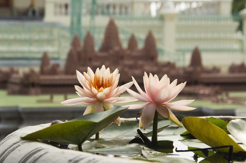 Phnom Penh, Seerosen vor der Silberpagode