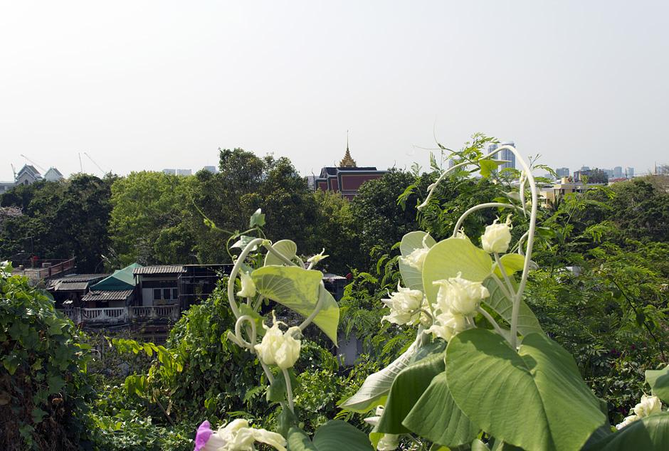 Bangkok, Blick vom Golden Mount zum Königspalast