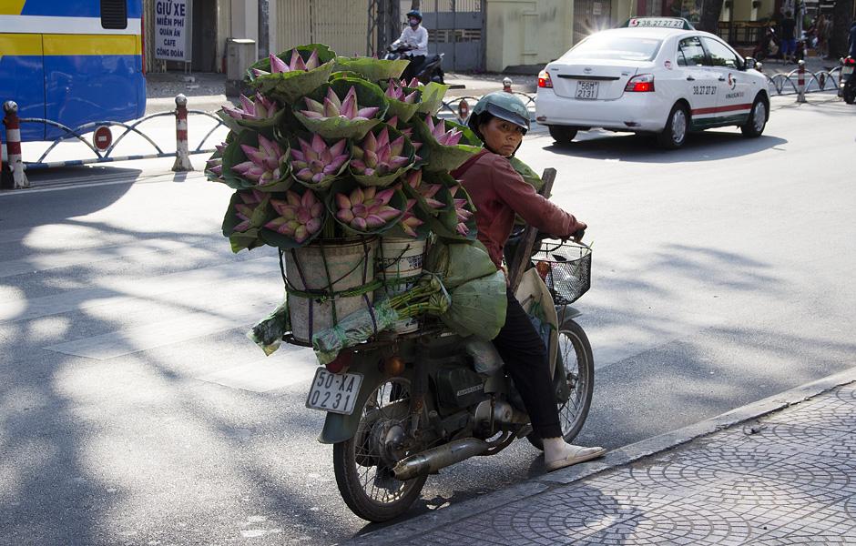 Ho Chi Minh City, District 1, Lotus