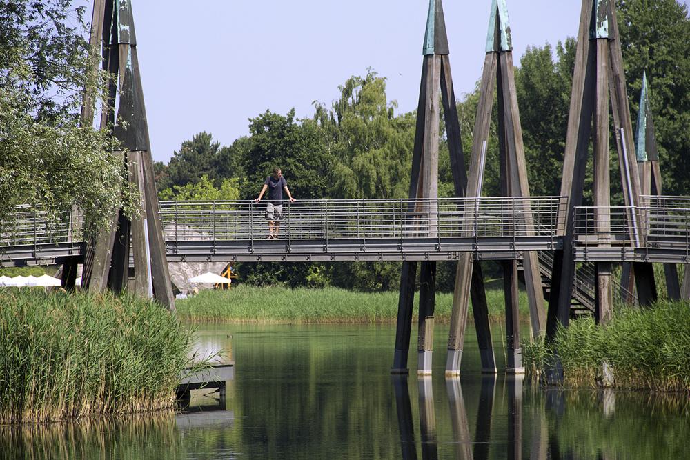 Britzer Garten, Großer See und Rhizomatische Brücke