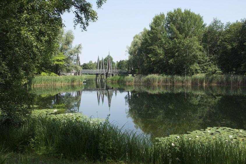 Berlin, Britzer Garten, Großer See und Rhizomatische Brücke