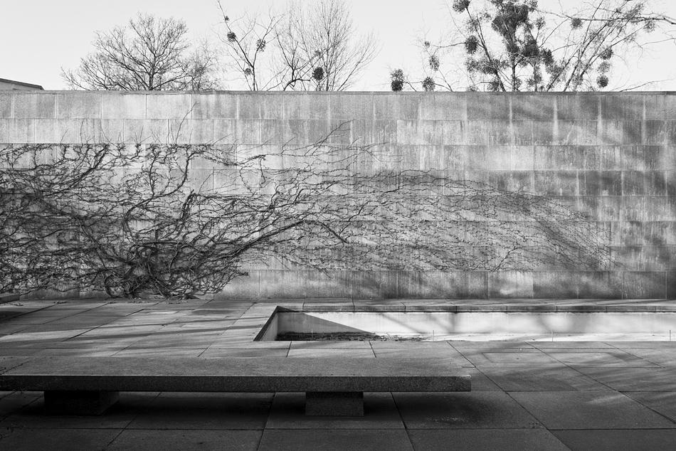 Neue Nationalgalerie, Berlin, Mies van der Rohe, Garden
