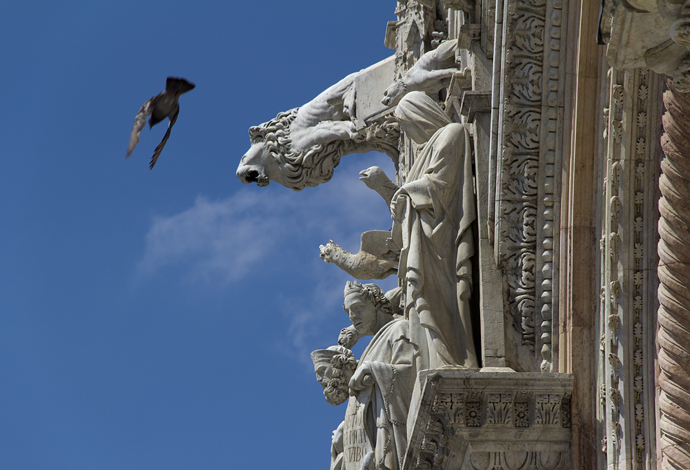 Siena, Dom, Fassade, Gargoyle