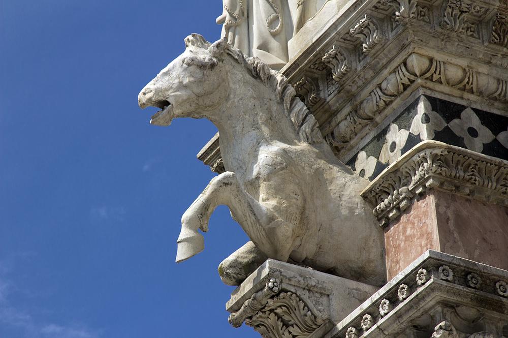 Siena, Pferd an der Fassade des Doms