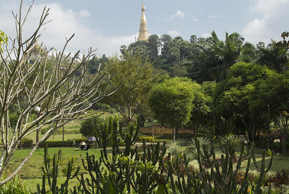 Yangon, Theingottara Park
