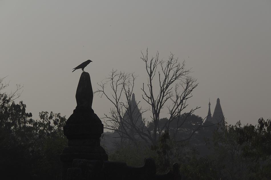 bagan, Mimalaung Kyaung