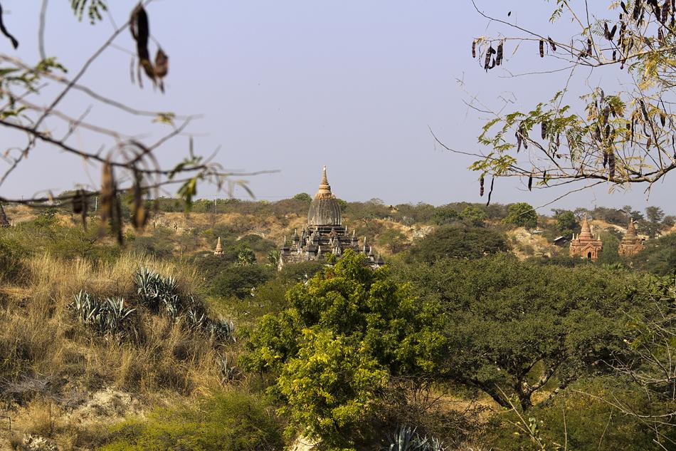 bagan, Nyaung-U, Kondawgyi Tempel