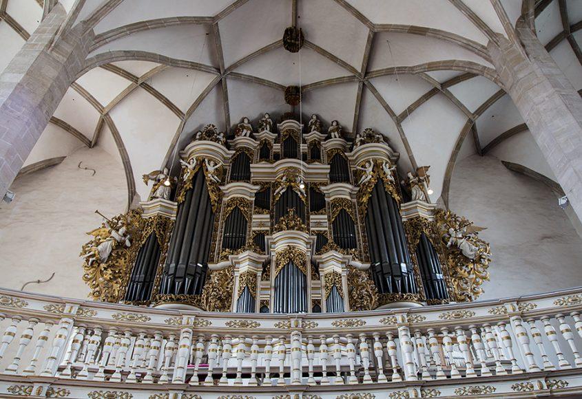Merseburger Dom, Orgel