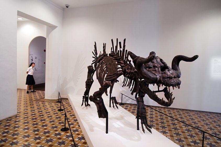 Tan Zi Hao, The Skeleton of Makara (The Myth of a Myth), Singapore Biennale 2016, Fabian Fröhlich