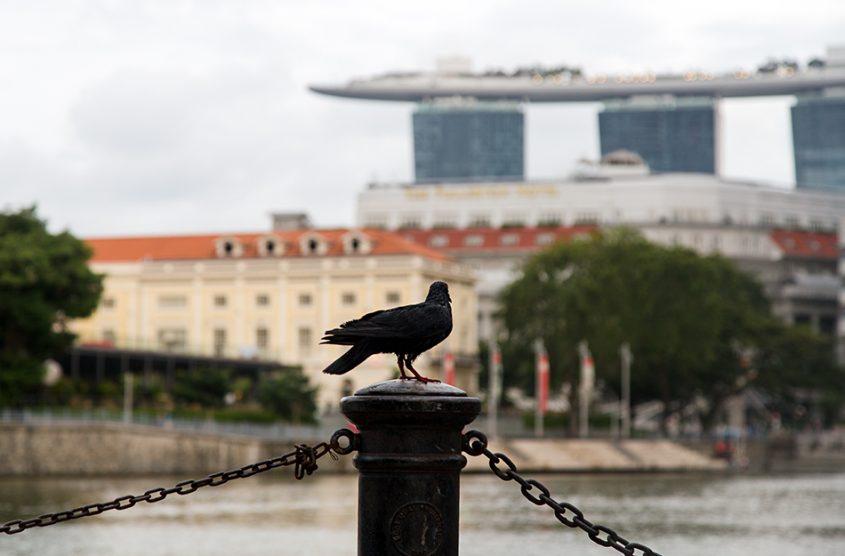 Fabian Fröhlich, Singapore, Singapore River Promenade