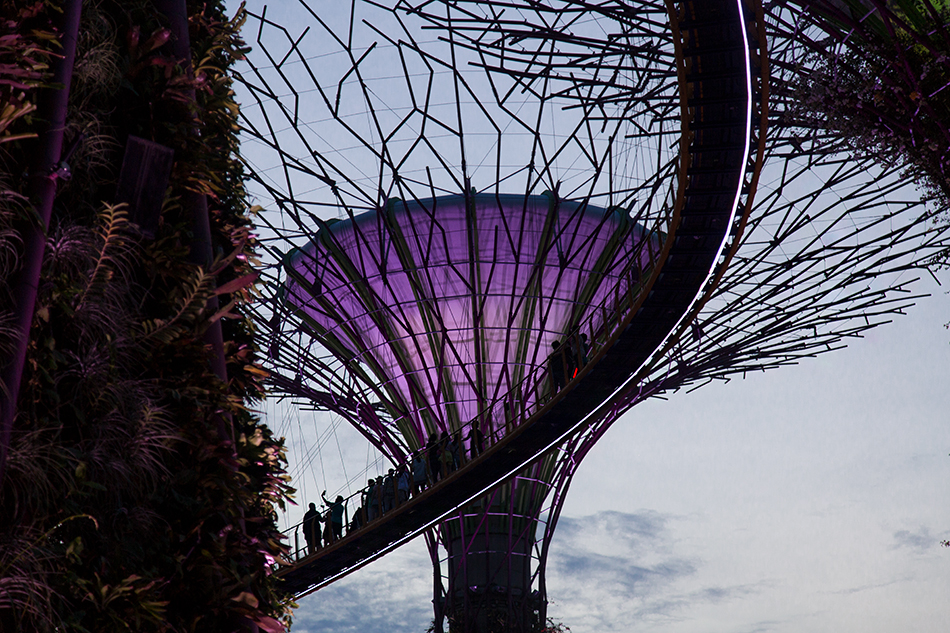 Fabian Fröhlich, Singapore, Gardens by the Bay,