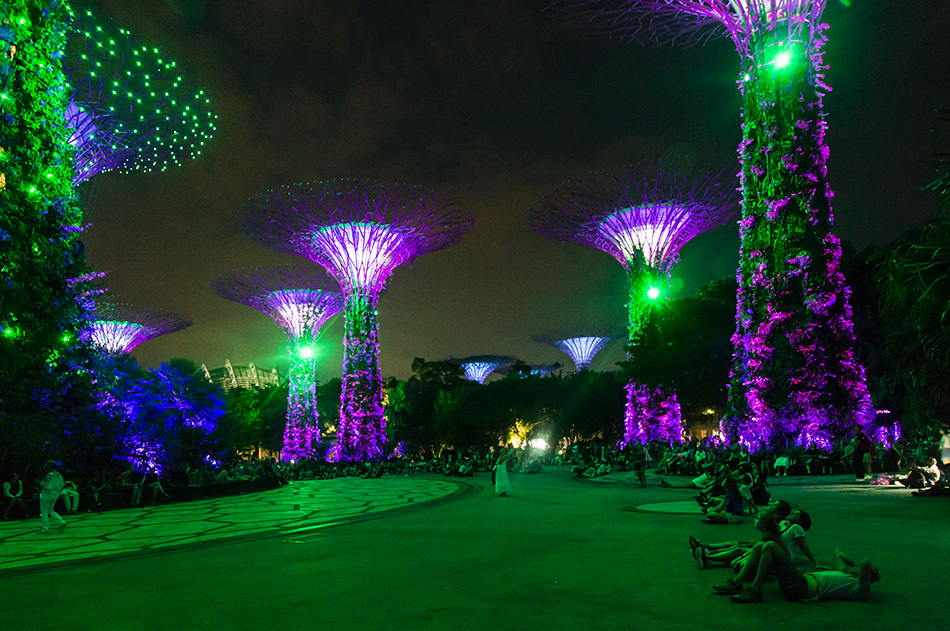 Fabian Fröhlich, Singapore, Gardens by the Bay, Supertree Grove at Night