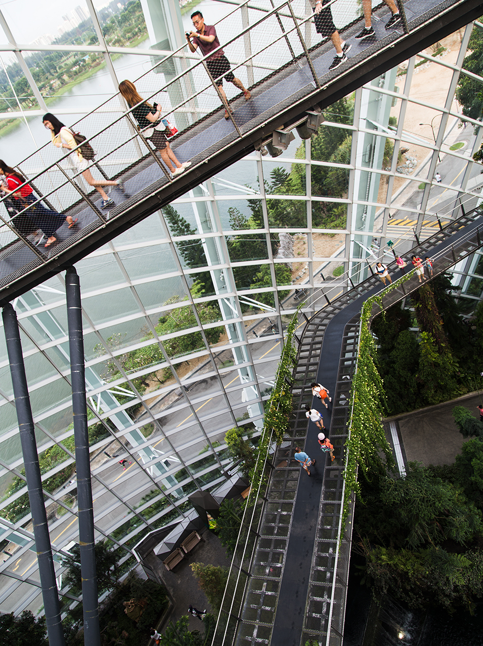 Fabian Fröhlich, Singapore, Gardens by the Bay, Skywalk, Cloud Forest