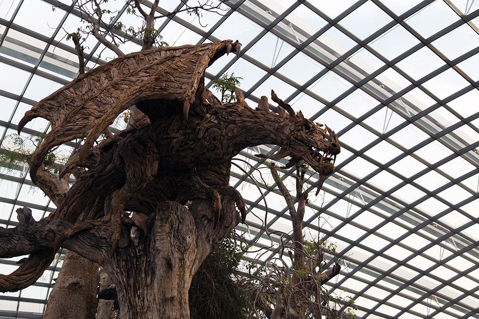 Fabian Fröhlich, Singapore, Gardens by the Bay, Singapore Flight, Dragon, Flower Dome