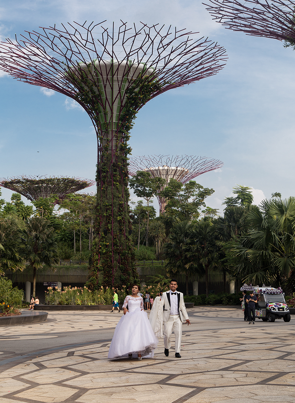 Fabian Fröhlich, Singapore, Gardens by the Bay, Supertrees