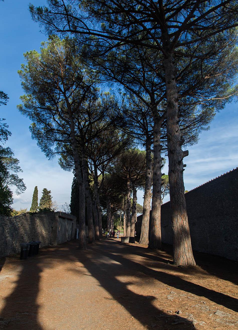 Pompei, Via di Castricio