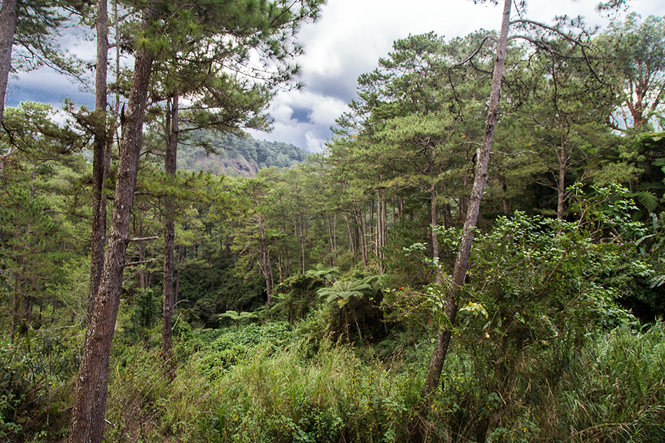 Fabian Fröhlich, Sagada, Philippinen, Echo Valley