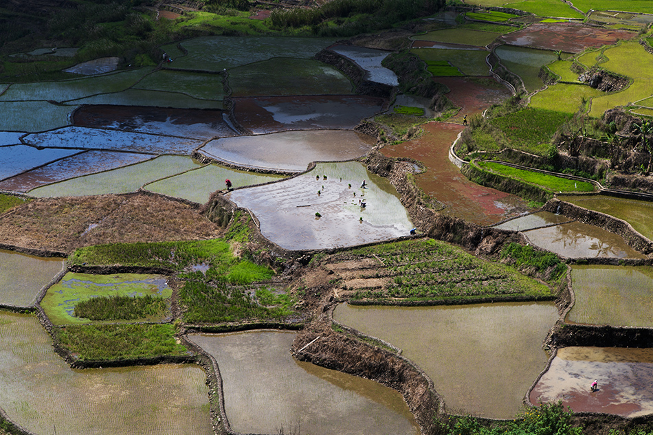 Fabian Fröhlich, Sagada, Philippinen, Rice terraces