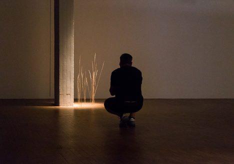 Fabian Fröhlich, 10 Berlin Biennale, Sara Haq, Trans:plant (Akademie der Künste)