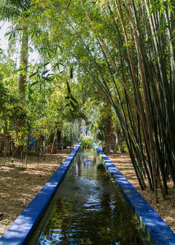 Fabian Fröhlich, Jardin Majorelle Marrakech