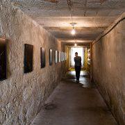 Fabian Fröhlich, Palermo, Manifesta 12, Orto botanico (Michael Wang, The Drowned World)