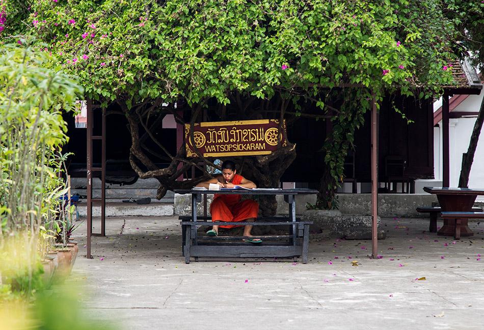 Fabian Fröhlich, Luang Prabang, Monk at Wat Sop Sickharam