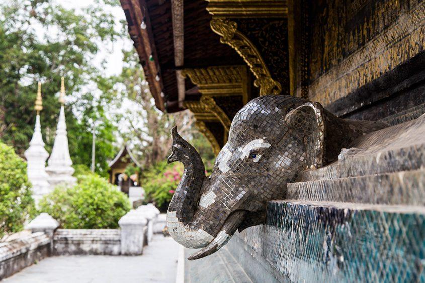Fabian Fröhlich, Luang Prabang, Wat Xieng Thong, Wat Xieng Thong, Elefphant at the Sim