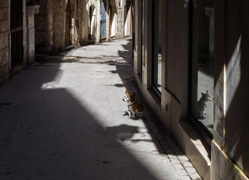 Fabian Fröhlich, Siracusa, Ortygia, dog