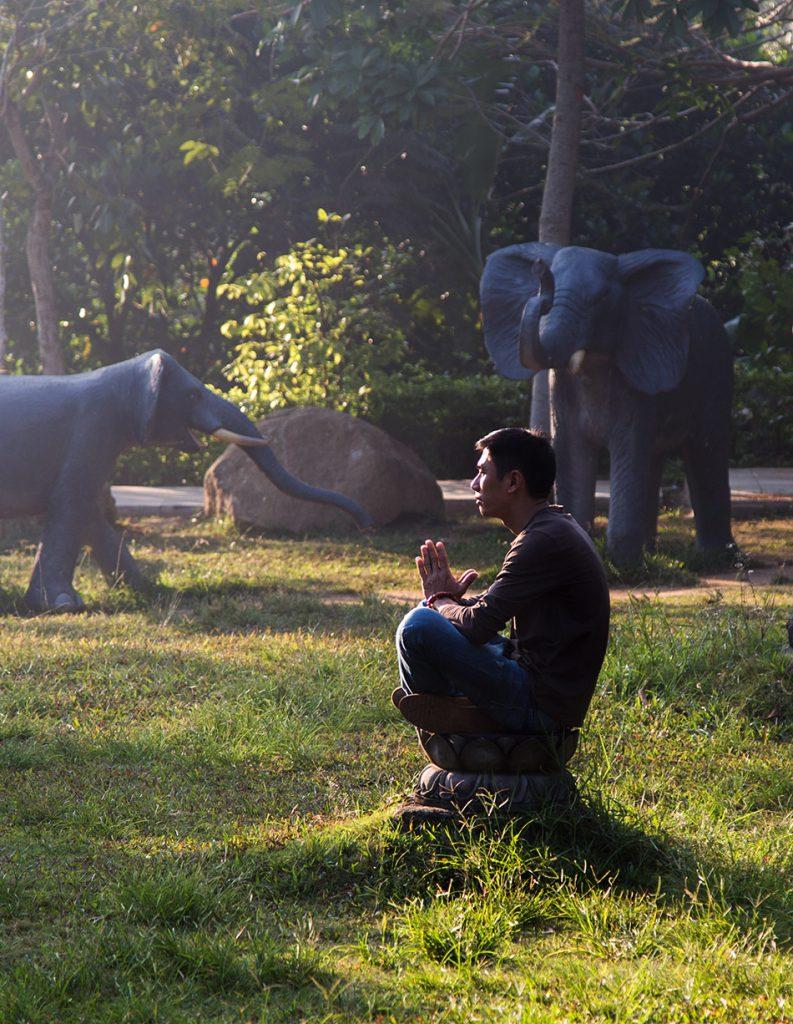 Da Nang, Linh Ứng Pagoda, Elephants