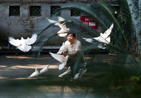 Hanoi, Old Quarter, Doves, Tượng Đài Vua Lê Thái Tổ (King Lê Thái Tổ Monument)
