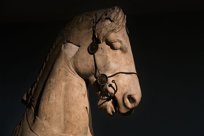 Fabian Fröhlich, British Museum, Colossol Horse (Fragment from the Quadriga of the Mausoleum at Halicarnassus)