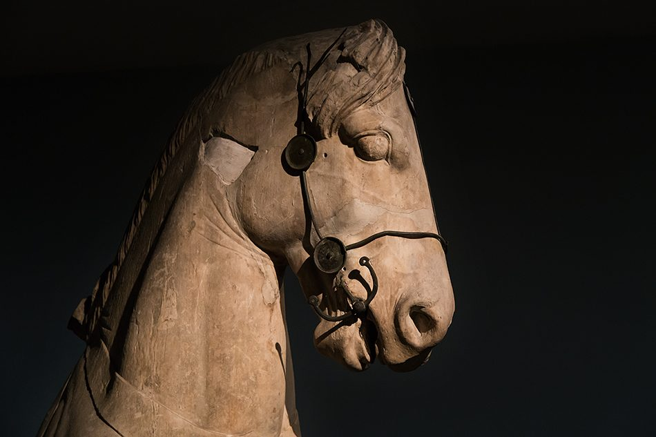 Fabian Fröhlich, British Museum, Colossol Horse (Fragment from the Quadriga of the Mausoleum at Halicarnassus)