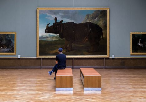 Fabian Fröhlich, Staatliches Museum Schwerin, Jean-Baptiste Oudry, Rhinoceros Clara